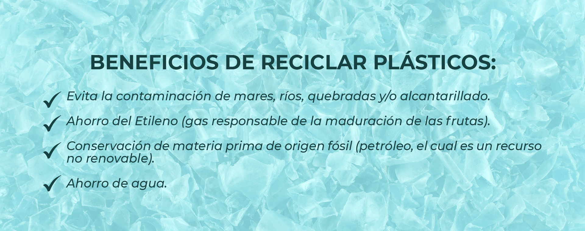 BENEFICIOS PLASTICOS 2